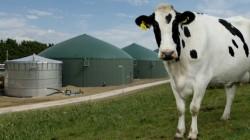 agricultural-biogas-plant